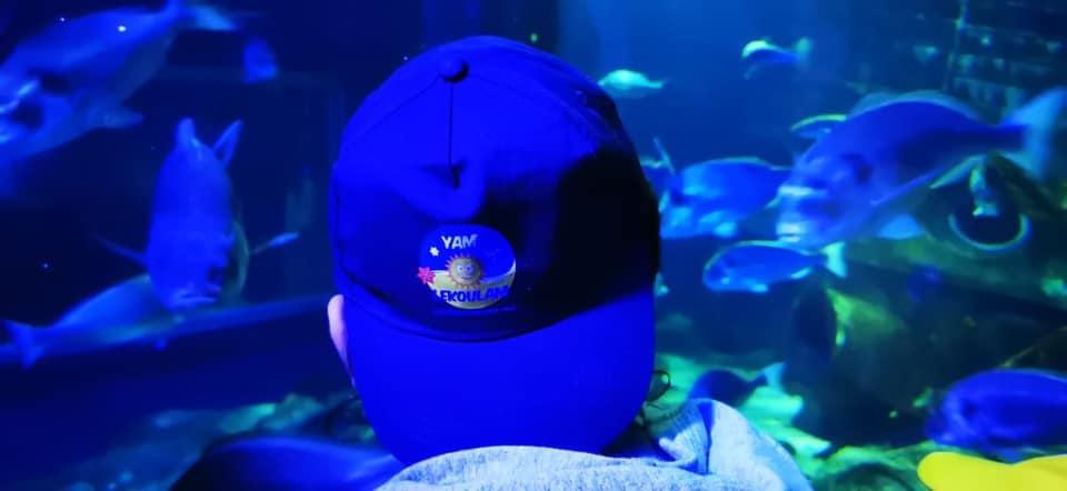 Yam Lekoulam : des enfants à l'aquarium