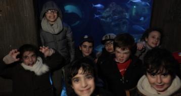 Les enfants heureux dans cet aquarium géant !